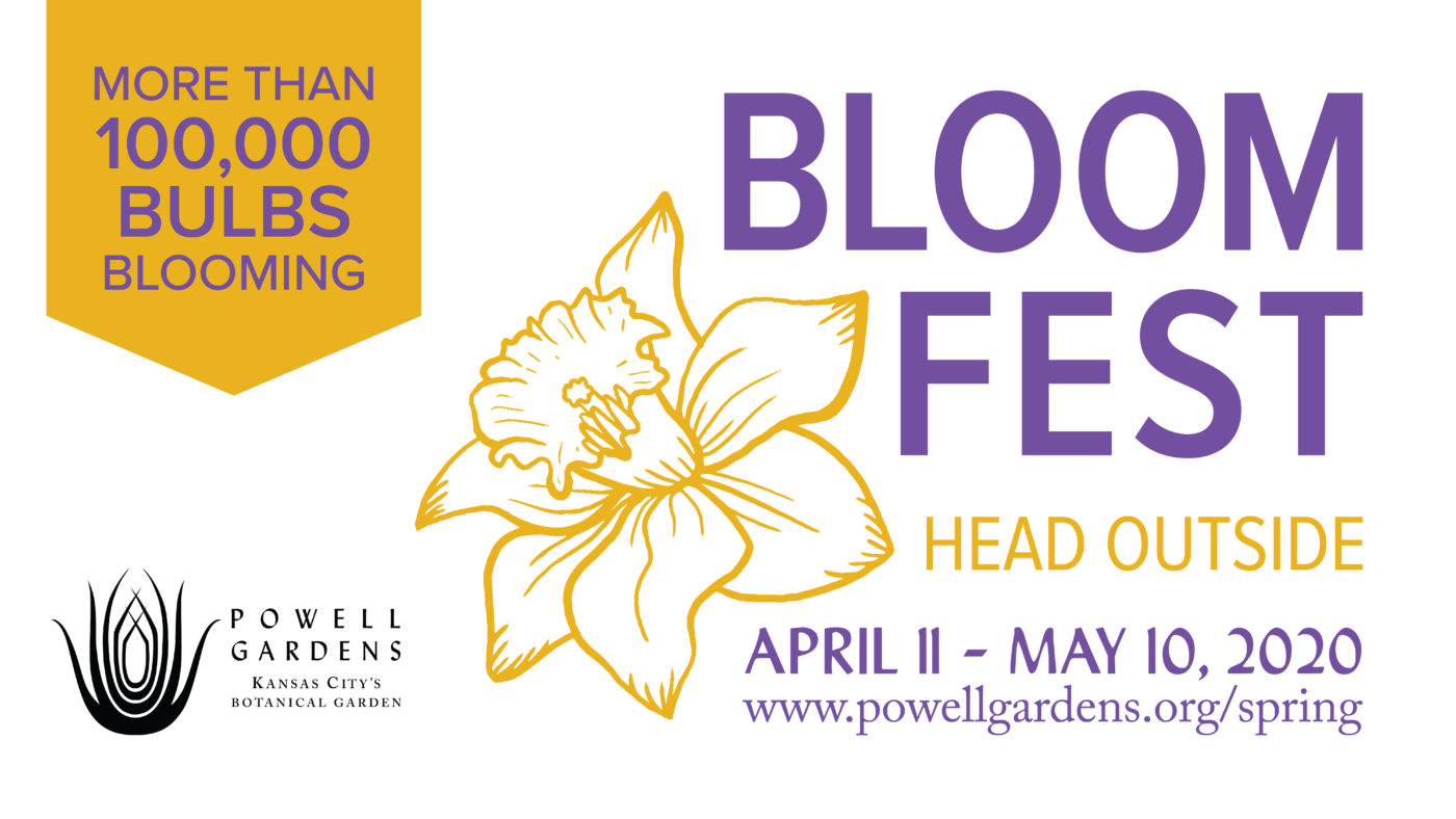 Bloom Fest: Head Outside